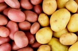 Kartofler – Er du tungsindet?